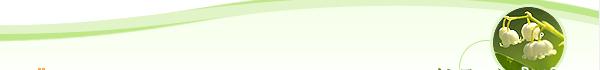お客様の声 大阪松原市 巻き爪 整骨院 鍼灸院 フットケア カイロプラクテック